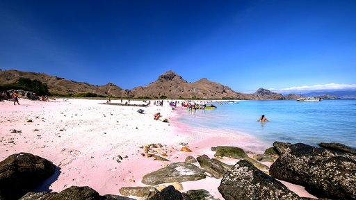 Pink sand, turqoish water, green coral reef, the island is brown are all you can get in pink beach